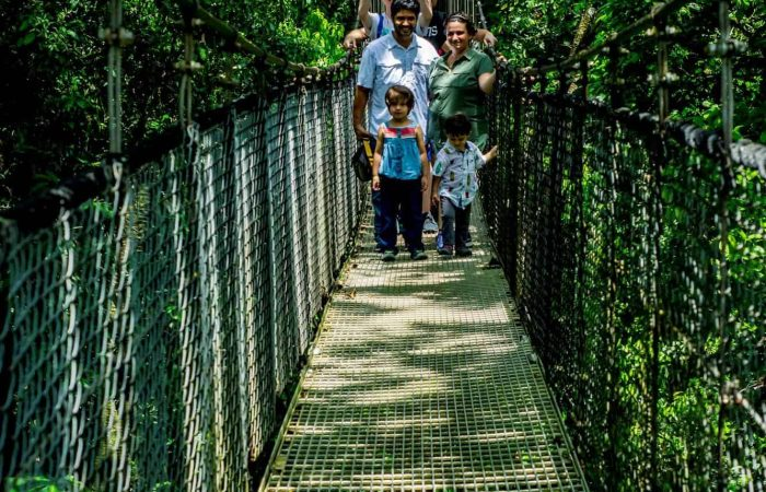 Costa Rica tours in Arenal hanging bridges